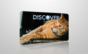 Кредитные карты для любителей домашних животных